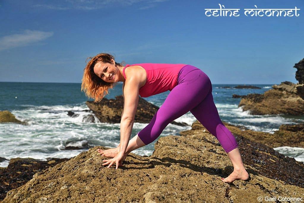 Le Yoga Les Femmes Celine Fayard Yoga b540b8fd3e1