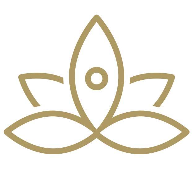postures-de-yoga-formation-initiale-en-ligne