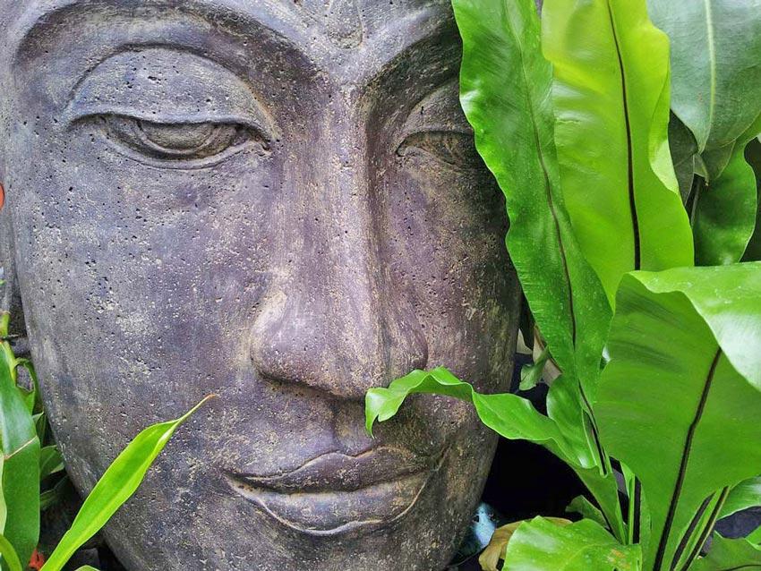 green yoga-buddha